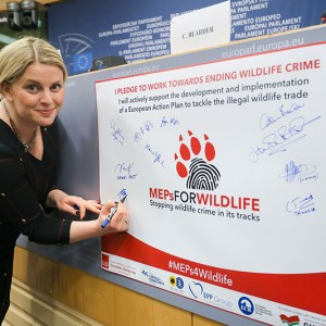 Emma at the launch of the Interest Group on Wildlife.